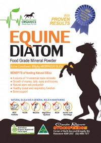 OME Equine Diatom A4 Sticker final