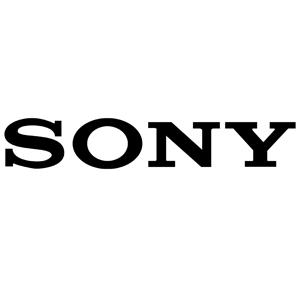 SONY 300px
