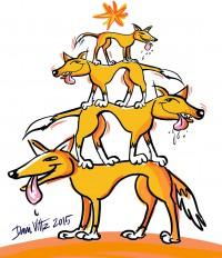 dingo tree2