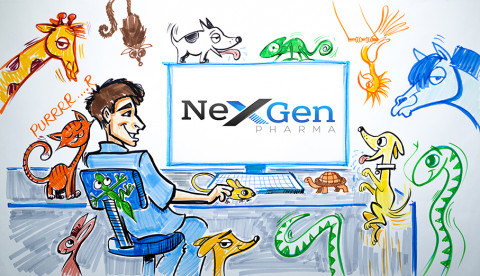 NexGen digi sign storyboard
