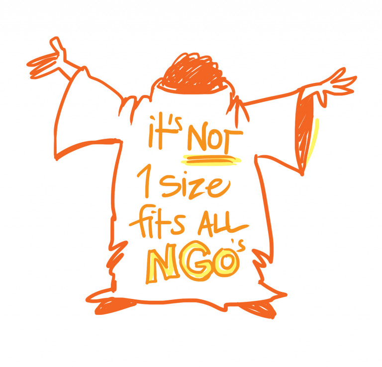 NGOs not all 1 size
